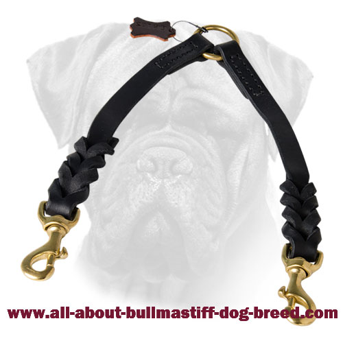 Braided Bullmastiff Leather Coupler for Walking