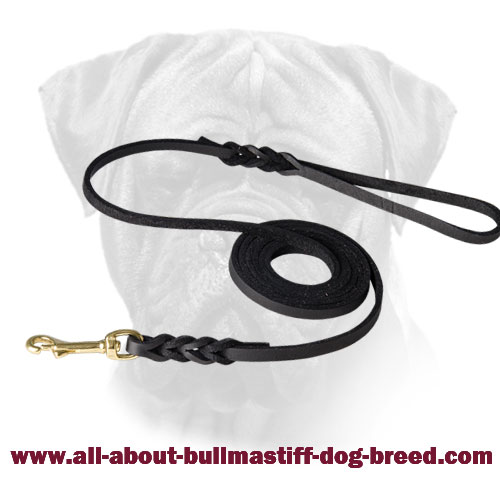 Braided Bullmastiff Leather Leash Brass Snap Hook for Walking