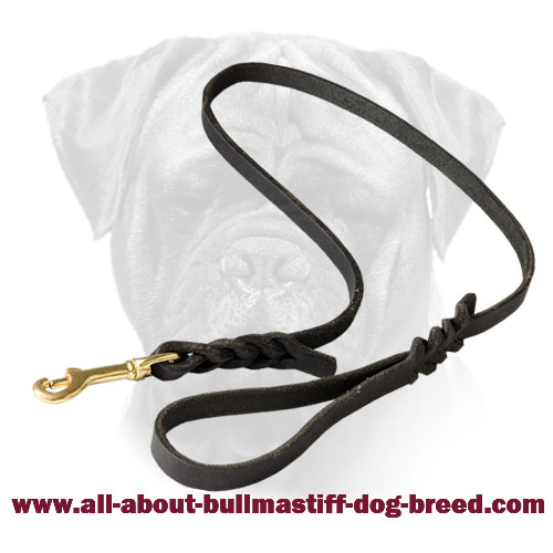 Braided Bullmastiff Leather Leash
