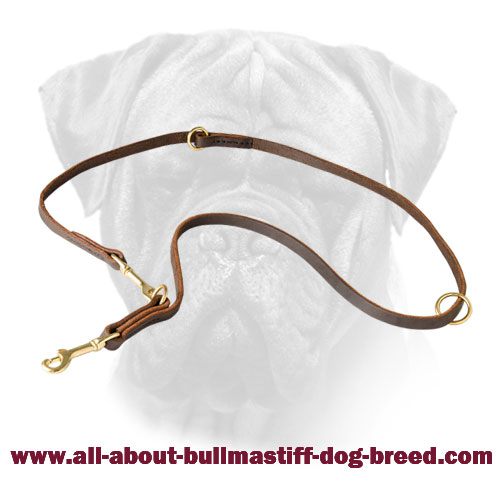 Leather Bullmastiff Leash with Brass Fittings for Walking