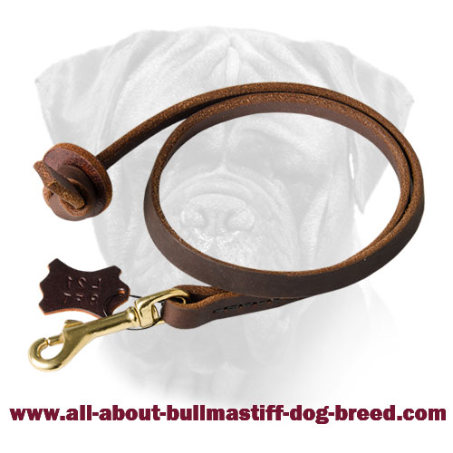 Bullmastiff Leather Leash with Brass Fittings