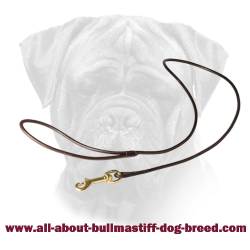 Leather Leash with Brass Fittings for Bullmastiff