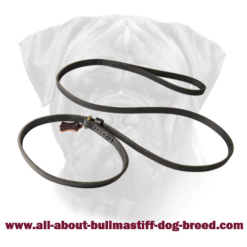 Leash Collar Combination Bullmastiff Leather Fast Handling