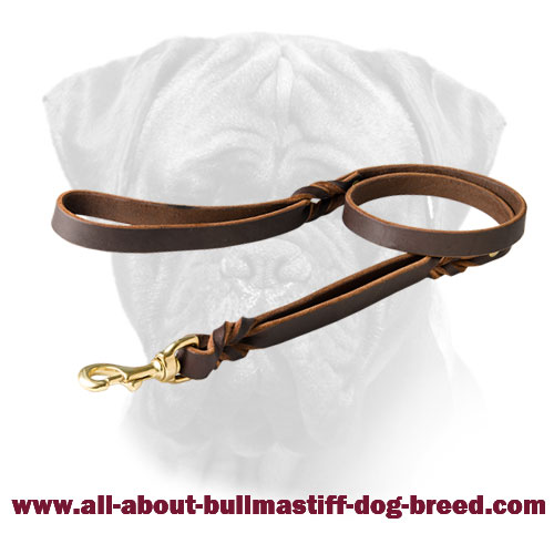 Decorated Bullmastiff Leather Leash Braids