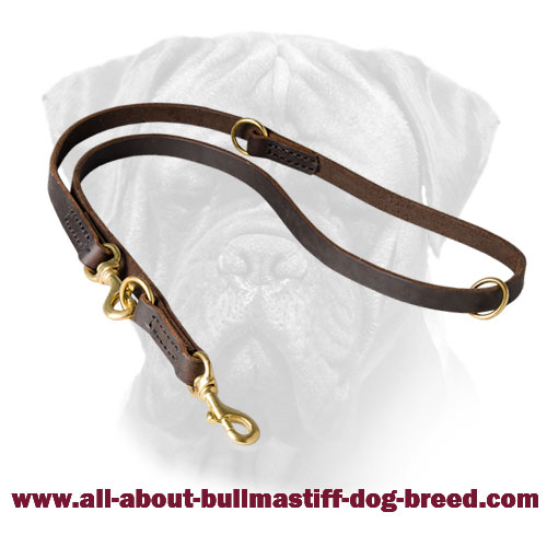 Multifunctional Bullmastiff Leather Leash for Walking