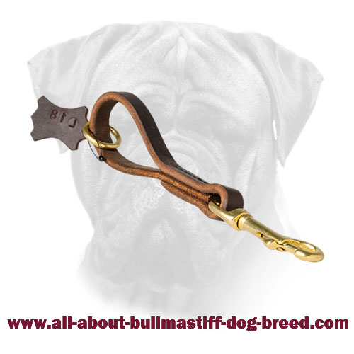 Pull Tub Bullmastiff Leather Brass Hardware