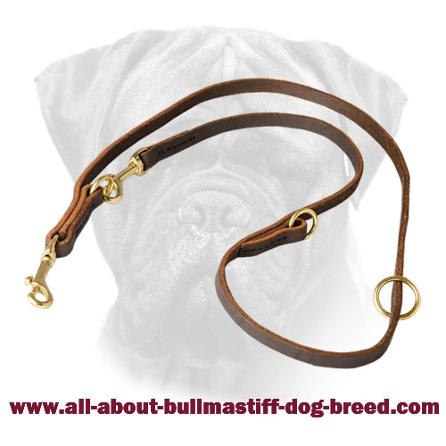Leather Multimode Bullmastiff Leash for walking and training