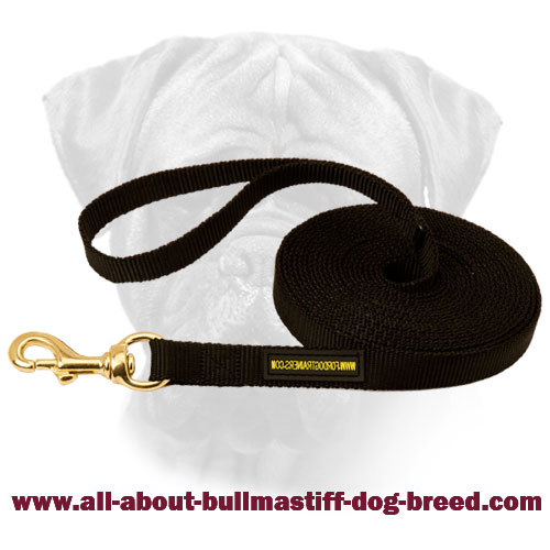 Nylon Bullmastiff Leash Brass Fittings for Walking