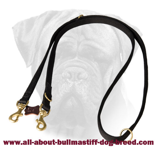 Nylon Bullmastiff Leash with Brass Fittings
