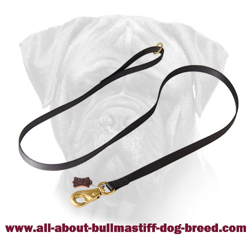 Bullmastiff Nylon Leash with Extra Strong Snap Hook for walking and training