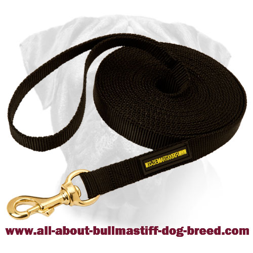 Long Bullmastiff Nylon Leash for Training