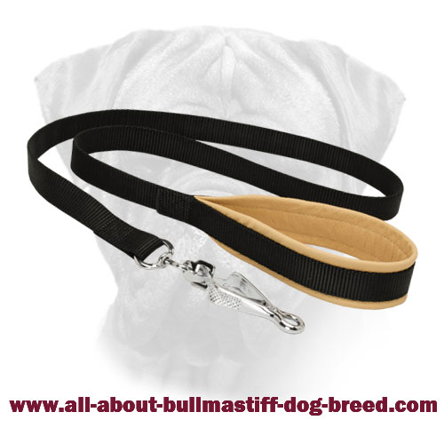 Nylon Bullmastiff Leash Padded Handle for Walking