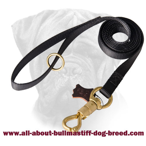 Bullmastiff Nylon Leash Smart Lock for walking and training