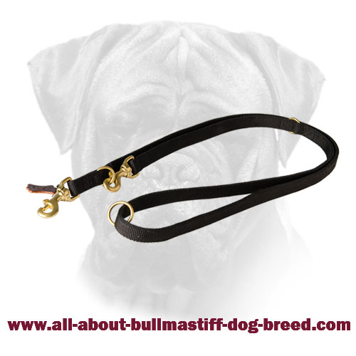 Multifunctional Bullmastiff Nylon Leash