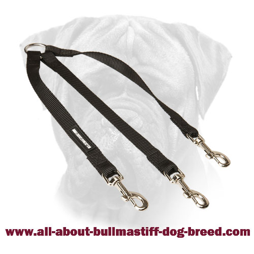 Triple Coupler Bullmastiff Nylon for Walking