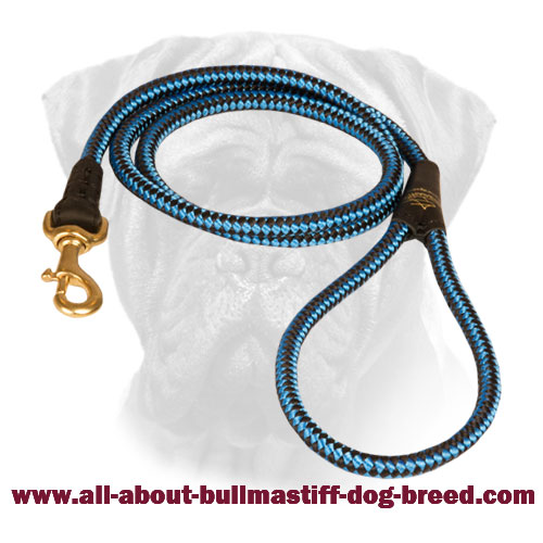 Nylon Bullmastiff Cord Leash Blue