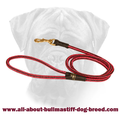 Nylon Bullmastiff Red Cord Leash
