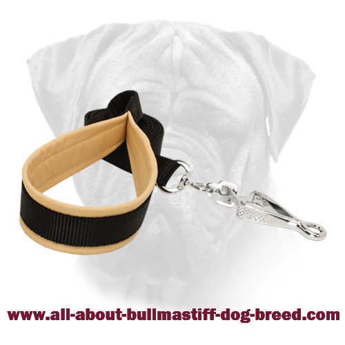 Stitched Bullmastiff Nylon Leash