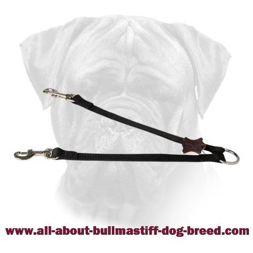 Bullmastiff Nylon Stitched Coupler