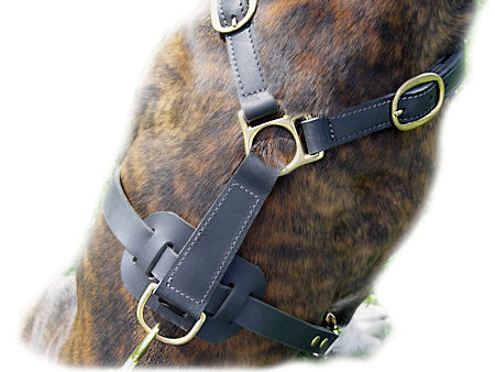 Classic Leather Harness For Big Dogs-Bullmastiff harness