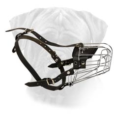 New Look Bullmastiff Wire Basket Dog Muzzle
