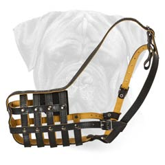 Cool Leather Dog Muzzle for Bullmastiff's Regular Wear