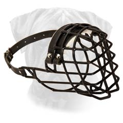 Modern Wire Basket Dog Muzzle For Cold Seasons