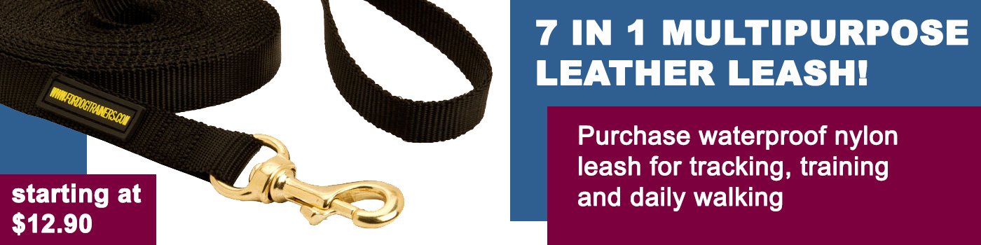 Nylon Dog Leash for Training and Tracking for Bullmastiff