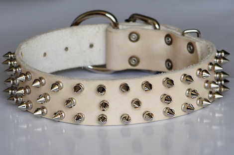 Best designer leather spiked dog collar for all dog breeds